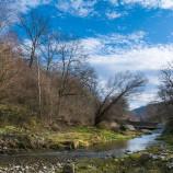 Моето село Дъскотна