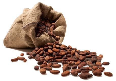 kakaobohnen_artikel
