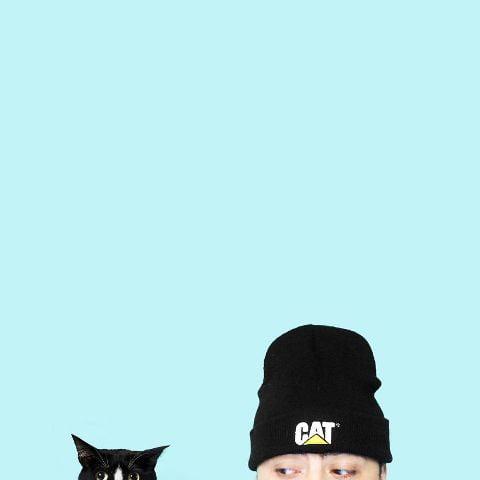 cat-portraits (22)