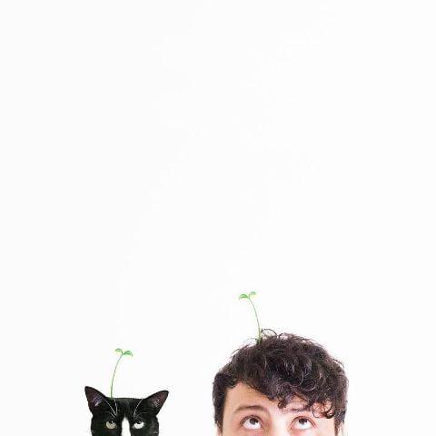 cat-portraits (38)