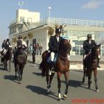Със слънце и препускащи коне посрещнаха 3 март в Бургас