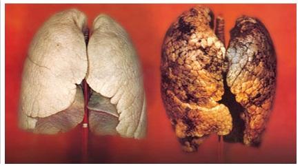 дроб на пушач