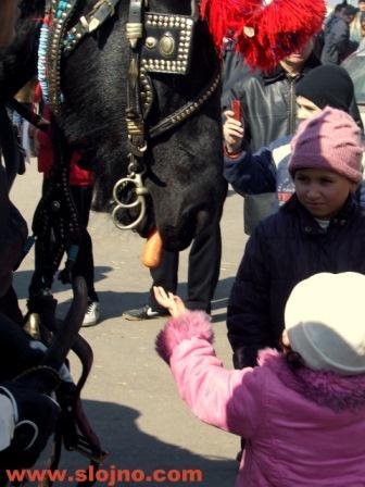 Дете дава морков на кон